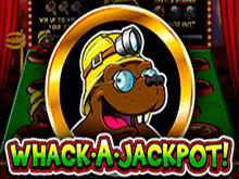 Whack A Jackpot на деньги
